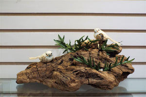 Driftwood in Nature - BLIZZARD OF SAVINGS!