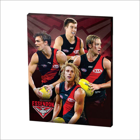 ESSENDON PLAYER CANVAS