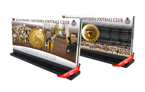 2013 Hawthorn Hawks AFL Premiers Premiership Medallion in Display Stand