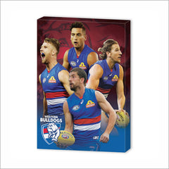WESTERN BULLDOGS PLAYER CANVAS