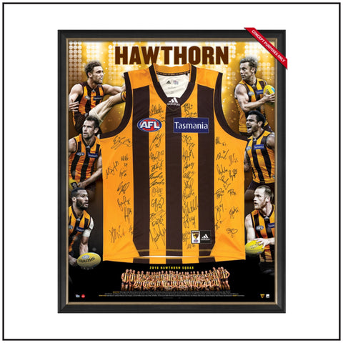 Hawthorn 2016 Team Signed Guernsey