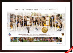 2013 HAWTHORN AFL PREMIERSHIP FRAMED COIN COLLECTION