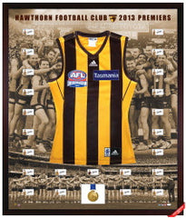2013 HAWTHORN AFL PREMIERSHIP PREMIUM FRAMED TEAM SIGNED JUMPER