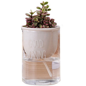 1Pc Automatic Watering Planter Pot Ceramic Flowerpot With Glass Water Container For Green Plants Succulent Plant Cactus