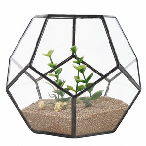 Black Glass Pentagon Geometric Terrarium Container Window Sill Decor Flower Pot Balcony Planter Diy Display Box (No Plant)