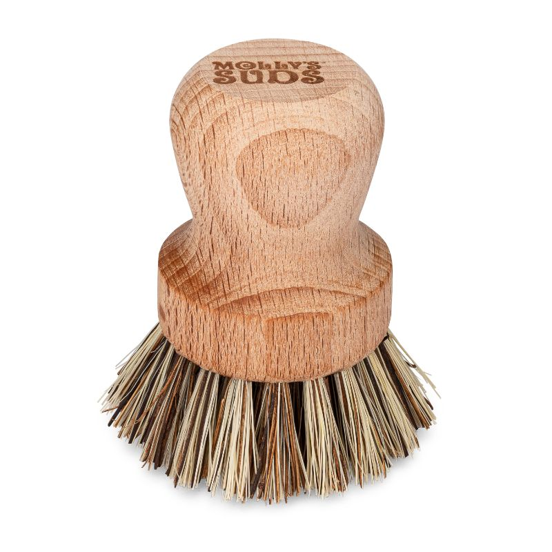 Heavy Duty Scrub Brush