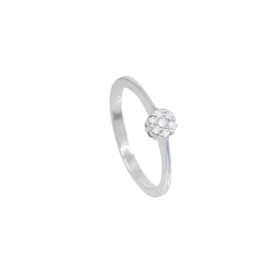 Pleaides Diamond Ring - Carrie K.
