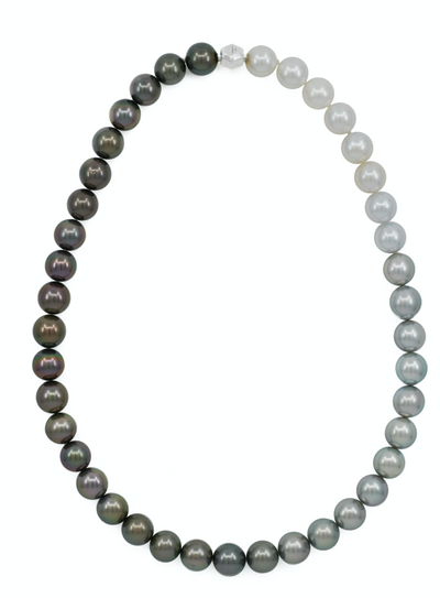 Tahitian & South Sea Gradated Pearl Necklace 10mm - Carrie K.