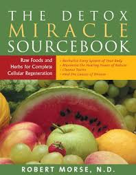 Dr Morse Detox Miracle Sourcebook