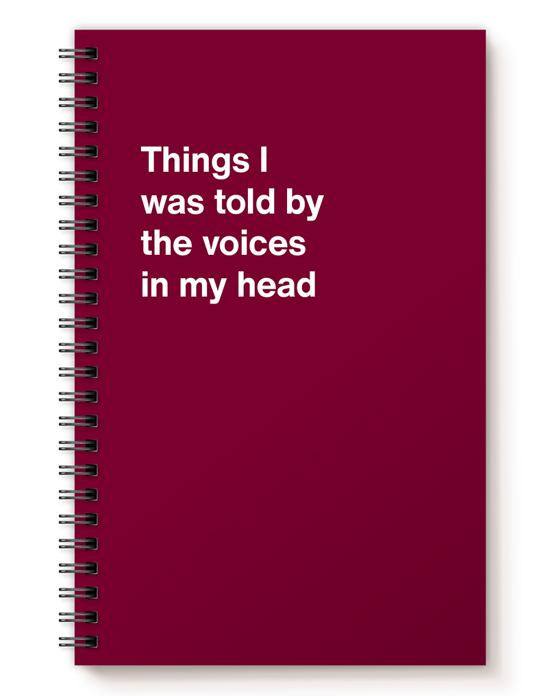 Things I was told by the voices in my head   WTF Notebooks