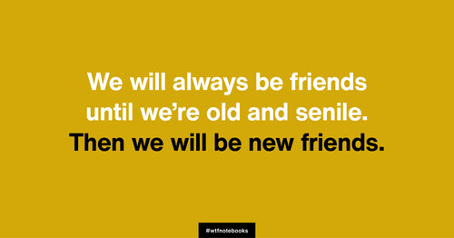 WTF Notebooks funny friendship title: Old and senile