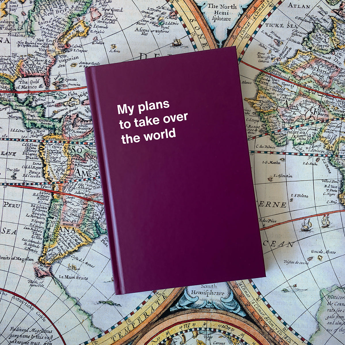 My plans to take over the world, funny notebook gift