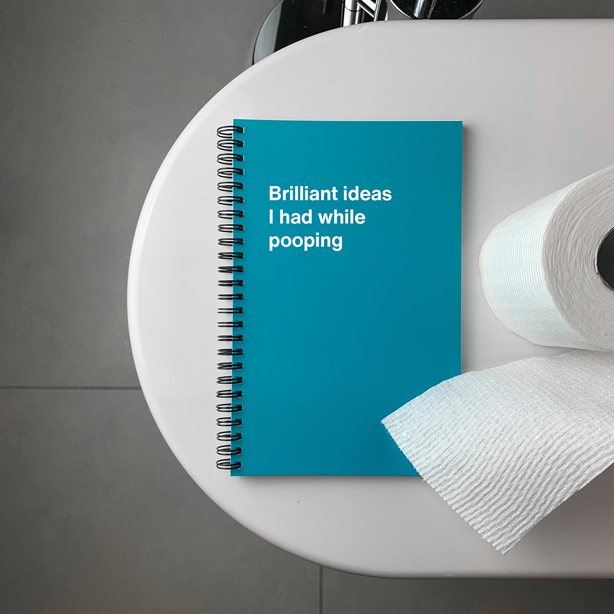Brilliant ideas I had while pooping   WTF Notebooks funny gifts