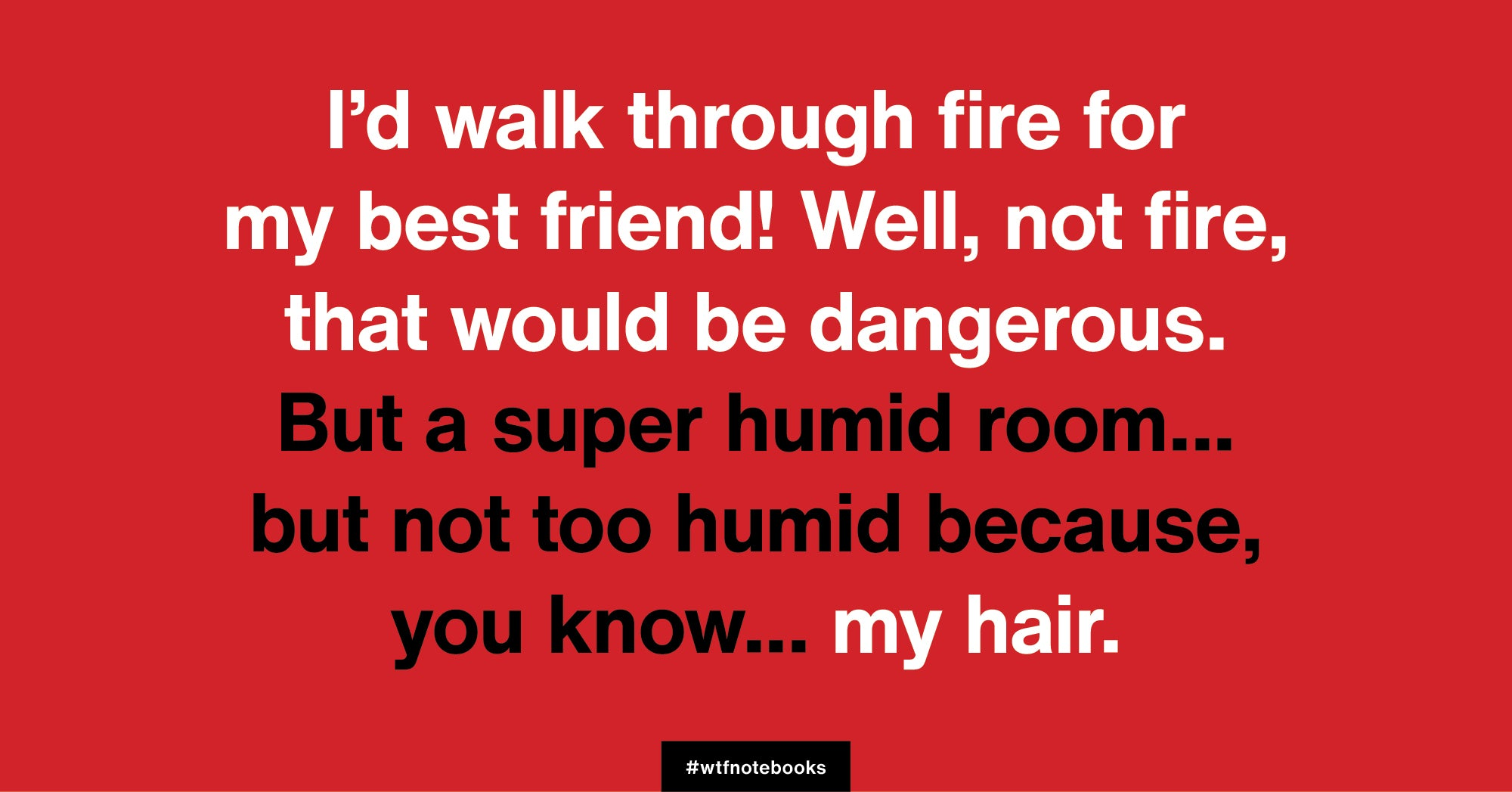 WTF Notebooks funny friendship title: Fire