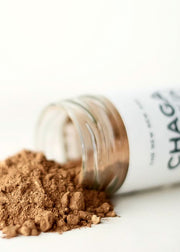 The New New Age - Chaga Pumpkin Spice