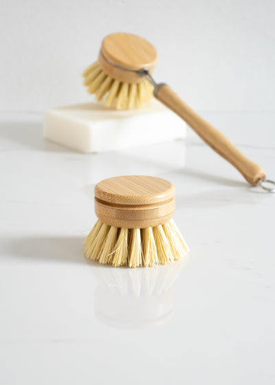 Replacement Head for Dish Brush