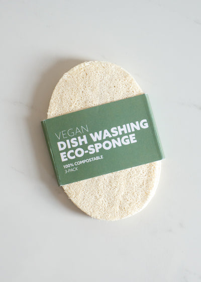 Dish Washing Eco Sponge (3-pack)