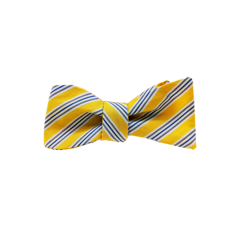 Mens High Cotton Seagull Stripe Bow Tie in Yellow Navy - Brother's on the Boulevard