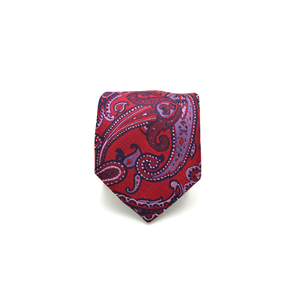 Mens Giannini Paisley Necktie in Red - Brother's on the Boulevard
