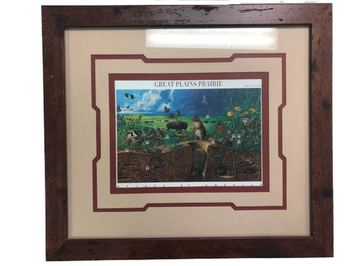 USPS Nature of America Great Plains Prairie Stamp Framed Picture 2001