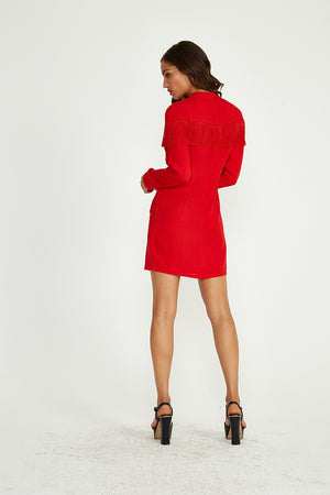 Liquorish Mini Dress With Tassel Details in Red