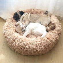 Load image into Gallery viewer, Calming Pet Bed - Small - 50cm
