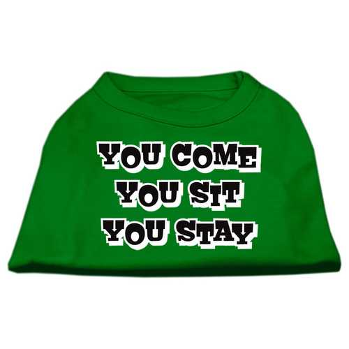 You Come, You Sit, You Stay Screen Print Shirts Emerald Green Lg (14)