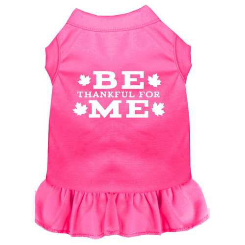 Be Thankful for Me Screen Print Dress Bright Pink XS (8)