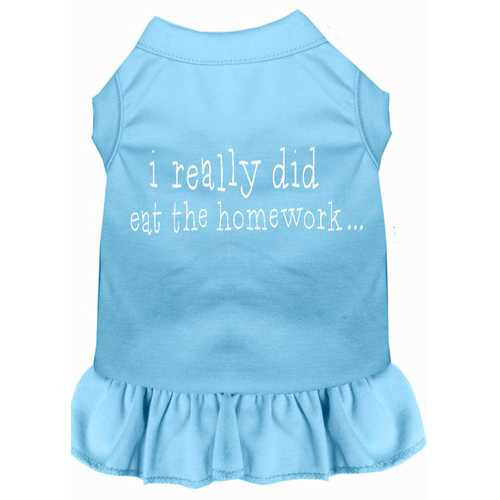 I really did eat the Homework Screen Print Dress Baby Blue XS (8)