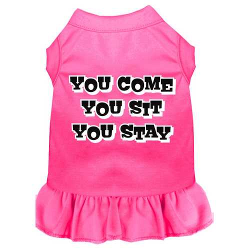 You Come, You Sit, You Stay Screen Print Dress Bright Pink Sm (10)