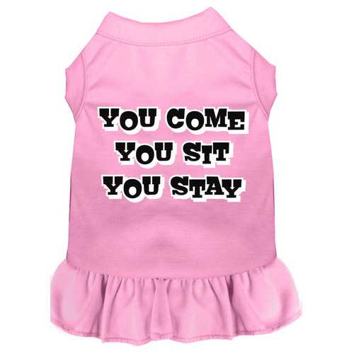 You Come, You Sit, You Stay Screen Print Dress Light Pink XL (16)