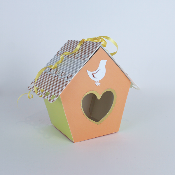 DIY Birdhouse Kits