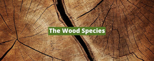 The Wood Species