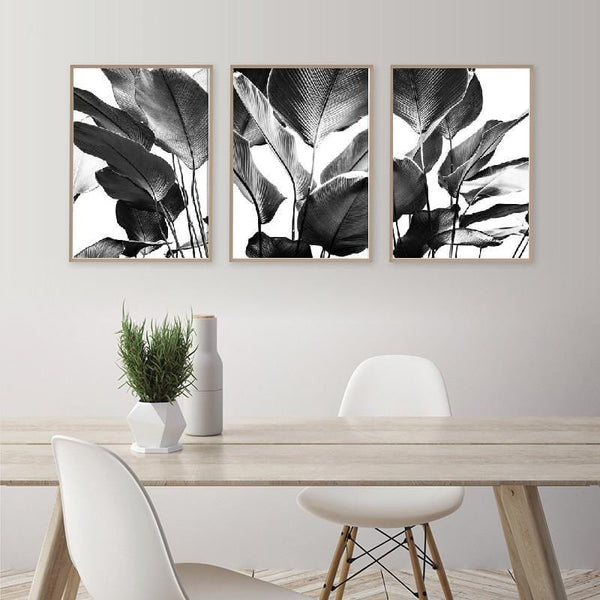 Monochrome Rubber Fig Leaves Canvas Collection