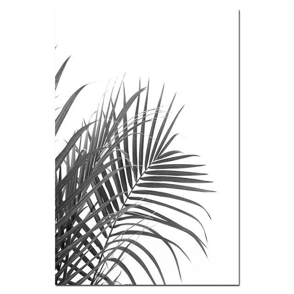 Monochrome Tropical Canvas Collection