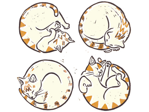 Ginger Cat Circles