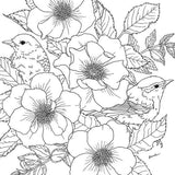 Coloriage Anti-Stress <br>Animaux de la Foret - Shop Antistress
