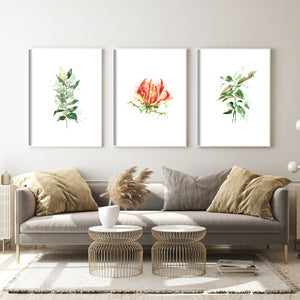 Load image into Gallery viewer, SIGNATURE COLLECTION & SHINING LIGHT SERIES - Karthikai / Gloriosa Lily - Art Prints