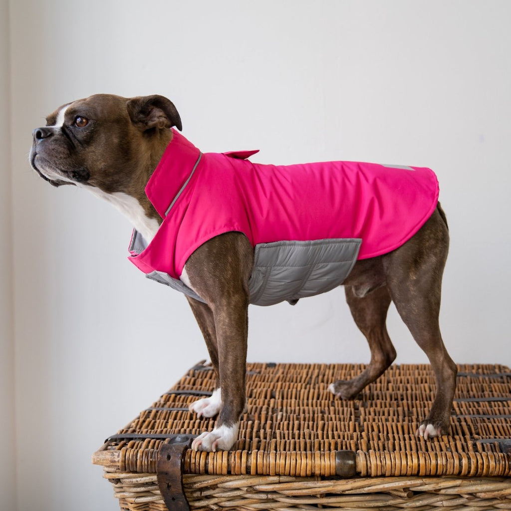 Dog Rain Coat - Fuchsia Magic Print - The Wardrobe