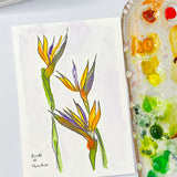 Watercolor Floral painting of Birds of Paradise flowers out lined in ink