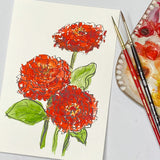 Watercolor Floral painting of Zinnia flowers out lined in ink