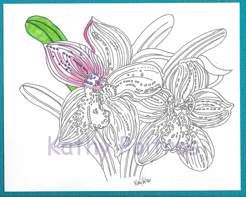 Over sized color your own greeting card, Orchids
