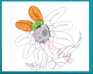 GIANT Fantasy Sunflower color your own greeting card by Kathy Poitras.