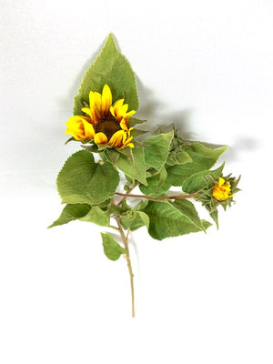 Mini Yellow Sunflowers With Buds