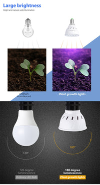 Greenhouse Growlight - SolarCreed