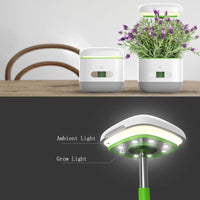 Solar Greenhouse Lamp - SolarCreed