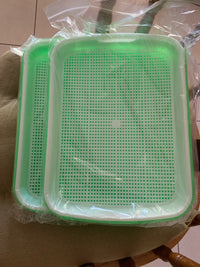 Greenhouse Sprouting Tray - SolarCreed