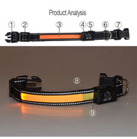 Solar Animal Collar Tracker - SolarCreed