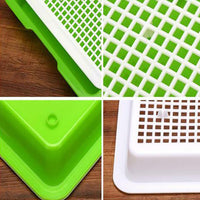 Greenhouse Sprouting Tray