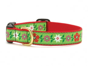 Poinsettia Dog Collar